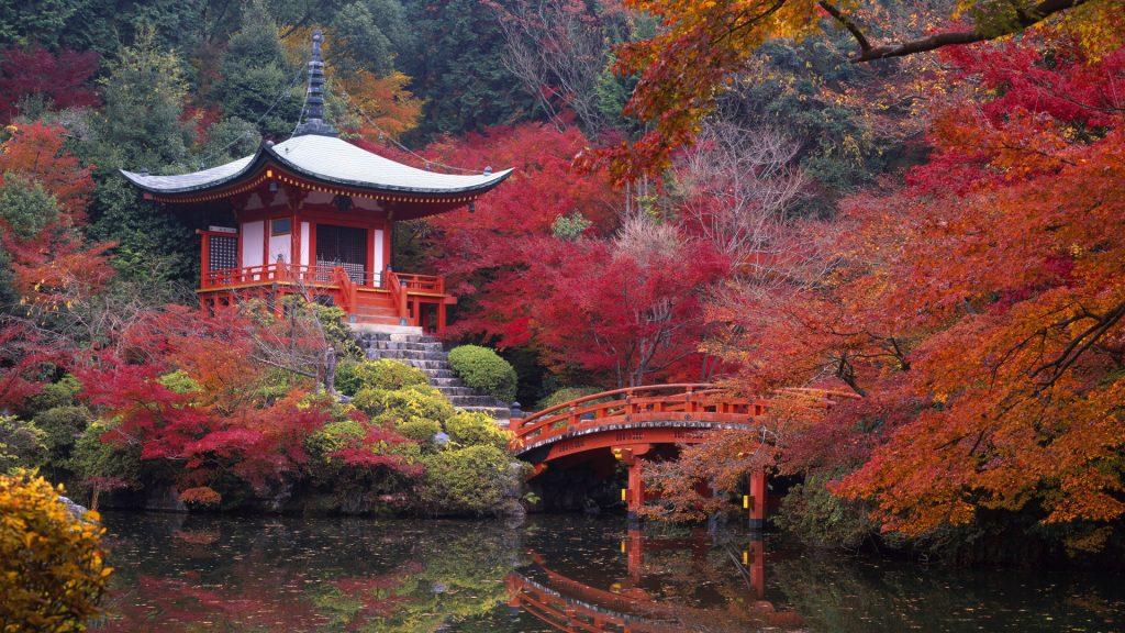 Отдых в Японии: Как провести время с пользой