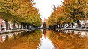 Брюссель столица Бельгии — отдых осенью