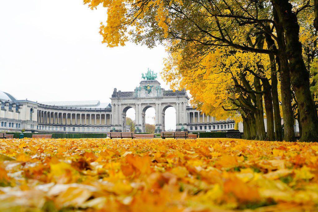 Дворец Брюссель